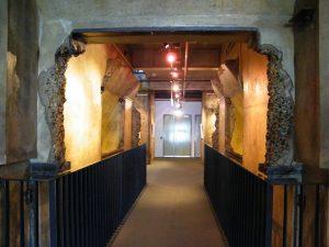 Powerhouse Tunnel of Art Brisbane